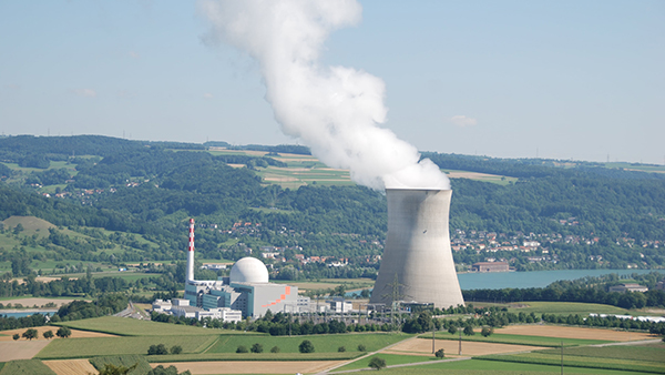 SEISMIC PRA, LEIBSTADT NPP (SWITZERLAND)